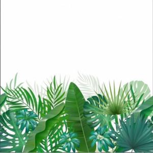 panneau jersey feuilles tropicales